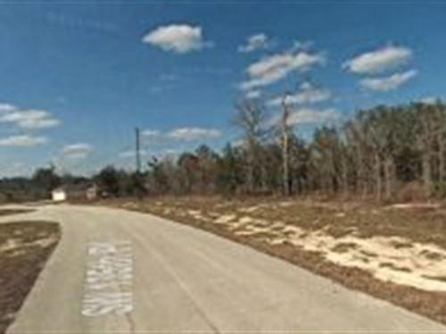 Marion, Florida $25,000 : Ocala : Marion County : Florida