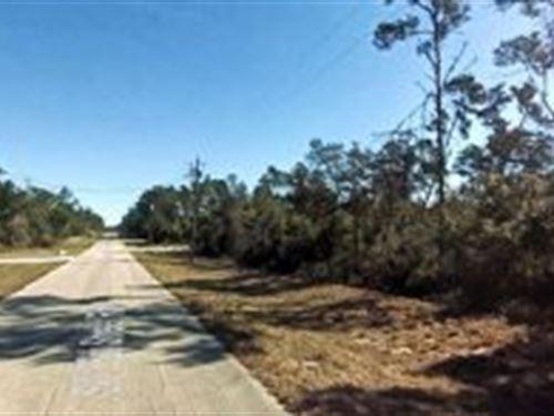 Marion County, Florida $15,000 : Ocala : Marion County : Florida