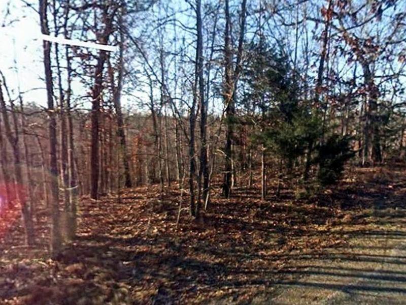 Baxter, Arkansas $10,000 : Mountain Home : Baxter County : Arkansas