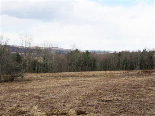 7 Acres Pittsfield Ny Financing : Pittsfield : Otsego County : New York