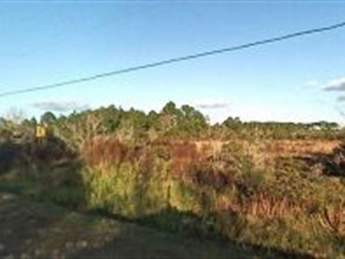 Polk County, Florida $7,500 : Lake Wales : Polk County : Florida