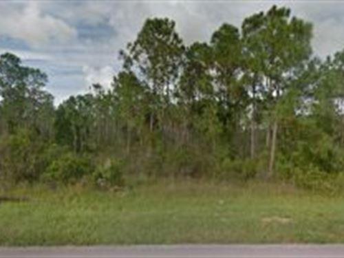Martin County, Florida $11,000 : Indiantown : Martin County : Florida