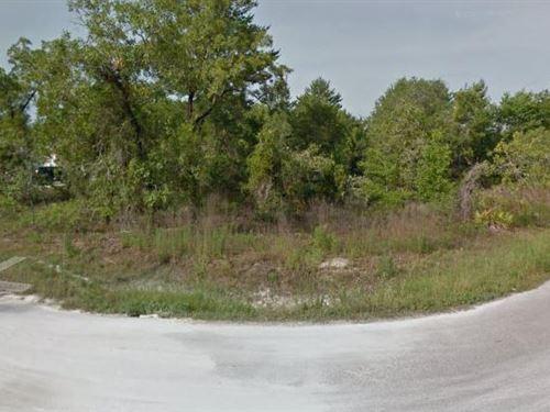 Hernando County, Fl $40,000 Neg : Brooksville : Hernando County : Florida