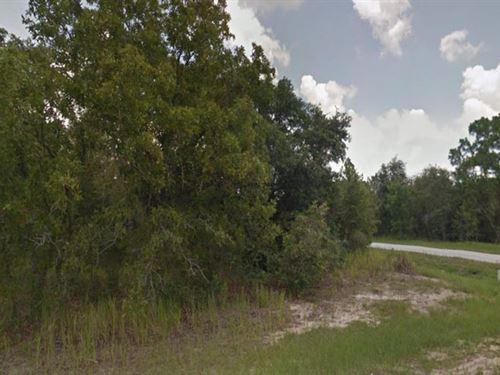 Marion County, Florida $18,500 Neg : Ocala : Marion County : Florida