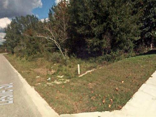 Marion County, Florida $29,900 Neg : Summerfield : Marion County : Florida