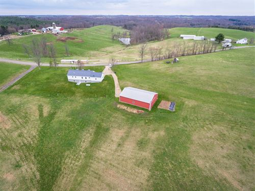 Absolute Monroe Co. Real Estate Auc : Beallsville : Monroe County : Ohio
