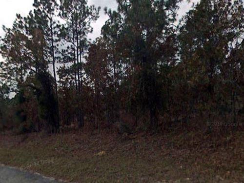 Levy County, Florida $8,000 : Dunnellon : Levy County : Florida
