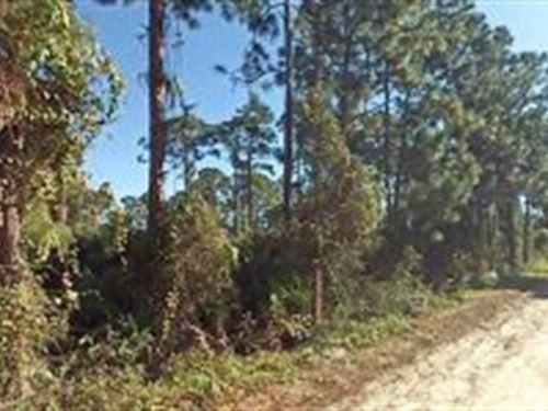 Indian River County, Fl $17,000 : Vero Beach : Indian River County : Florida