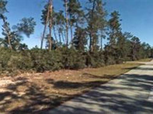 Marion County, Florida $25,000 : Ocala : Marion County : Florida