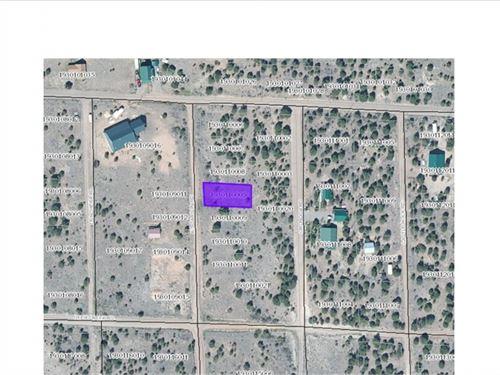 2081055 Own A Piece Of South Fork : South Fork : Rio Grande County : Colorado