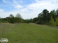 Hartley Road Deer & Turkey Hunting : Marion : Perry County : Alabama