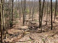 428 +/- Acres With Amazing Views : Danville : Montour County : Pennsylvania
