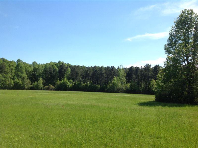 65 Acres Of Pasture & Timberland : Selma : Dallas County : Alabama