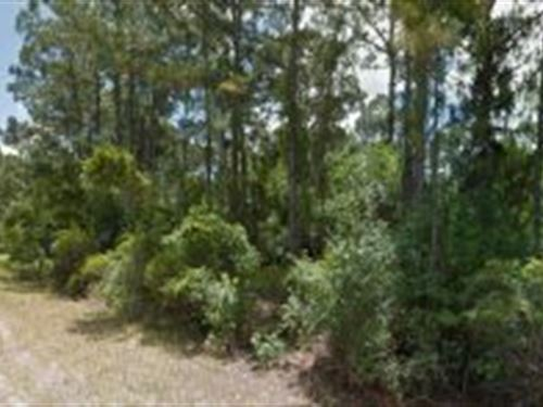 Sarasota County, Florida $19,000 : North Port : Sarasota County : Florida