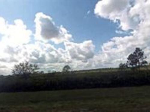 Polk County, Florida $7,500 : Frostproof : Polk County : Florida