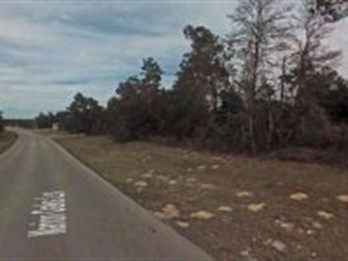 Marion County, Florida $28,000 : Ocala : Marion County : Florida