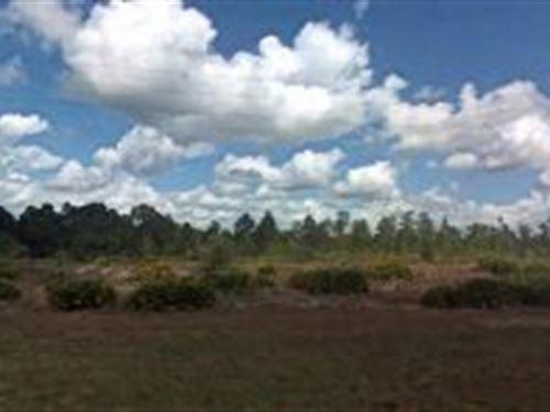 Polk County, Florida $20,000 : Frost Proof : Polk County : Florida