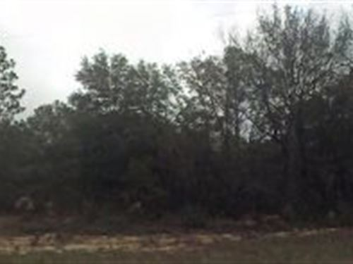 Jackson County, Florida $24,500 : Alford : Jackson County : Florida