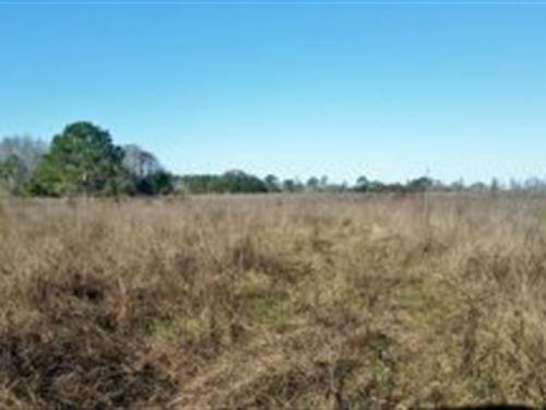 Lake County, Florida $17,000 : Groveland : Lake County : Florida