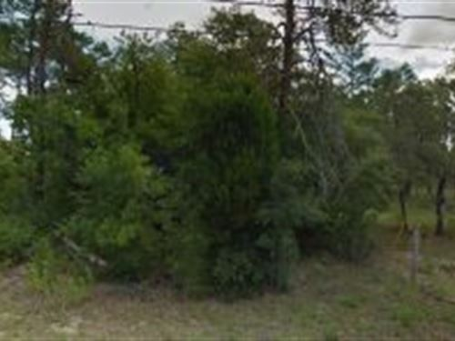 Citrus County, Florida $20,000 : Inverness : Citrus County : Florida