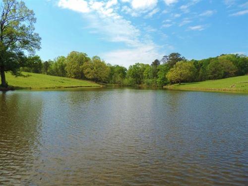 3 Acre Pond, Pasture & Timber : Greensboro : Greene County : Georgia