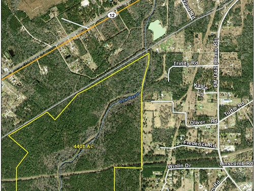 440 Acres Easement From Highline Rd : Mauriceville : Orange County : Texas