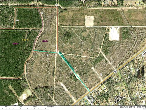 86 Acres Highway 12 : Mauriceville : Orange County : Texas