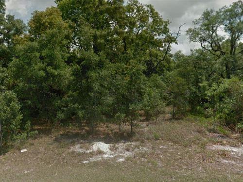 Hernando County, Fl $285,000 Neg : Spring Hill : Hernando County : Florida