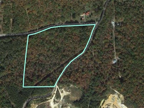 17+/- Acres - Near Neely Henry Lake : Ashville : Saint Clair County : Alabama