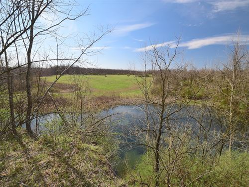 Bailey Long Rd - 70 Acres : Bethesda : Belmont County : Ohio