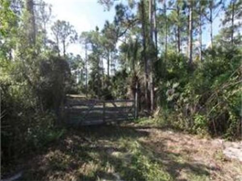 Polk County, Florida $7,000 : Frostproof : Polk County : Florida