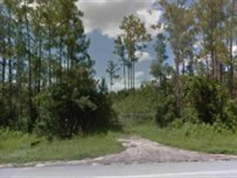 Polk County Florida 9 500 Land For Sale Lake Wales