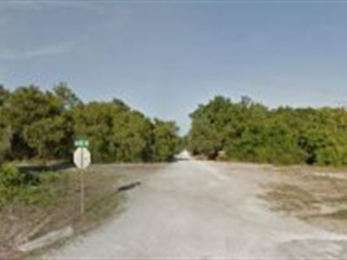 Marion County, Florida $18,500 : Fort McCoy : Marion County : Florida