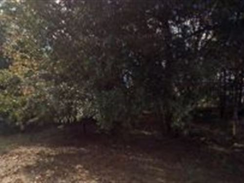 Marion County, Florida $32,000 : Summerfield : Marion County : Florida