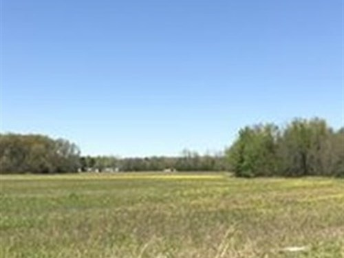 Potential Developmental Tract : Higginson : White County : Arkansas