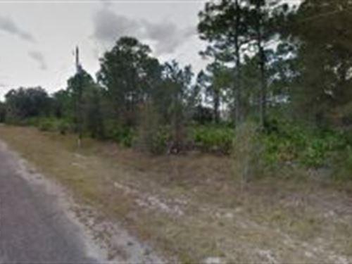 Lee County, Florida $19,500 : Alva : Lee County : Florida