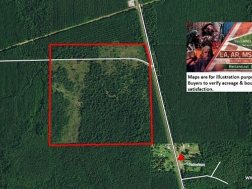 162 Ac Hunting & Timber Tract : Buna : Jasper County : Texas