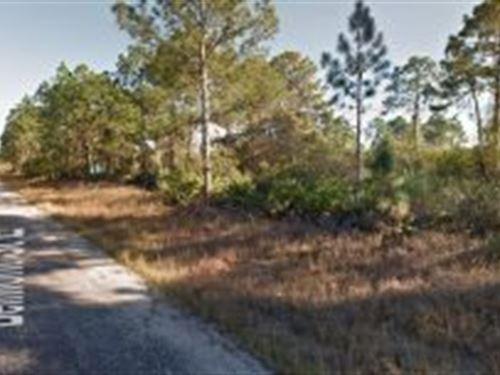 Lee County, Florida $14,000 Neg : Lehigh Acres : Lee County : Florida