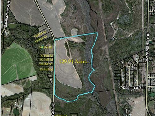 Hall Rd Tract - 129.91 Acres : Tifton : Tift County : Georgia