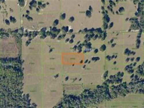 Polk County, Florida $25,000 : Lake Wales : Polk County : Florida