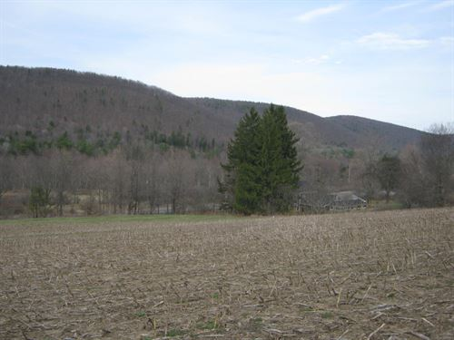 Building Lot Near Ithaca Ny Views : Danby : Tompkins County : New York