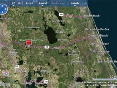 Marion County, Florida $8,000 : Ocala : Marion County : Florida
