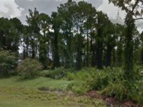 Marion County, Florida $31,000 : Ocala : Marion County : Florida