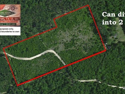 25 Ac Hunting With Rural Home Site : Brookeland : Sabine County : Texas