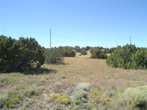 1.47 Acres Vacant Land, Arizona : St. Johns : Apache County : Arizona