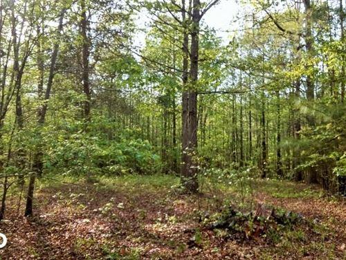 Greentree Lane : Siler City : Chatham County : North Carolina