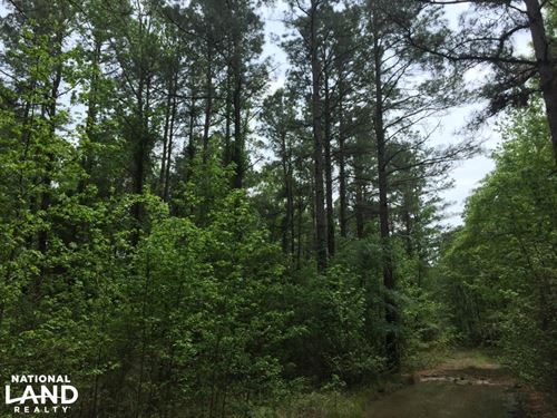 39+/- Acres Timberland : Norphlet : Union County : Arkansas