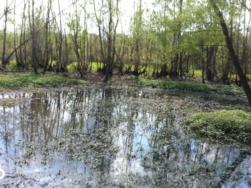 115+/- Acres Duck & Deer Recreation : Furlow : Lonoke County : Arkansas