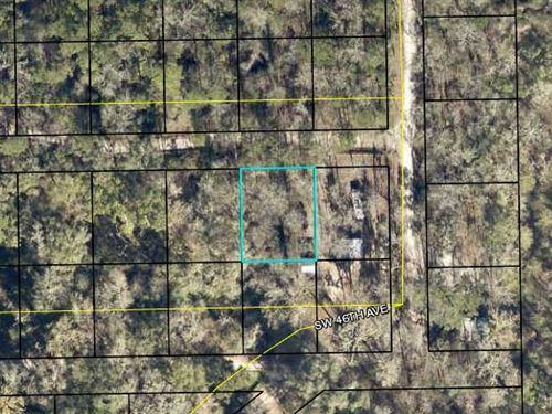 Hamilton County, Fl $17,999 Neg : Jasper : Hamilton County : Florida