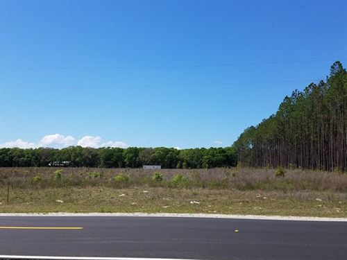 6 Ac Ready For Your New Home 773580 : Trenton : Gilchrist County : Florida